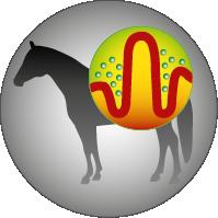 Josera-Pferdefutter-Sport-Plus-Darmflora-stabilisierend