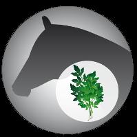 Josera-Pferdefutter-Leichter-Mix-Leicht-Verdaulich