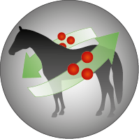 Josera-Pferdefutter-Joker-Mineral-Stoffwechsel-aktivierend
