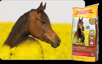 Josera-Pferdefutter-MashRapid-Foto
