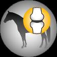 Josera-Pferdefutter-Knochen-Gelenke