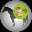 Josera-Pferdefutter-Leicht-verdaulich