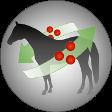 Josera-Pferdefutter-Stoffwechsel-aktivierend